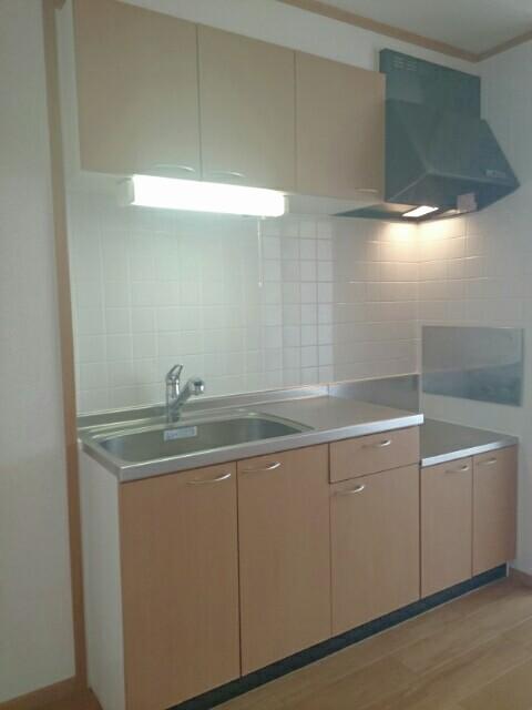 セレブリテ・メゾンC 02040号室のキッチン