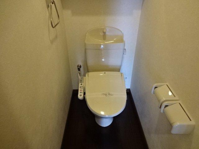 コンフォース鳩山 00101号室のトイレ