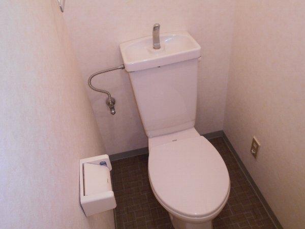 スターライトM 302号室のトイレ