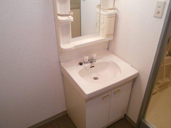 スターライトM 302号室の洗面所