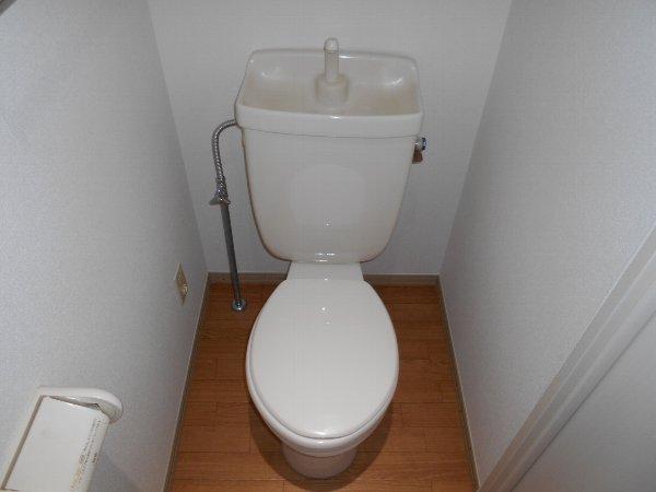 リバーサイドハウス 105号室のトイレ