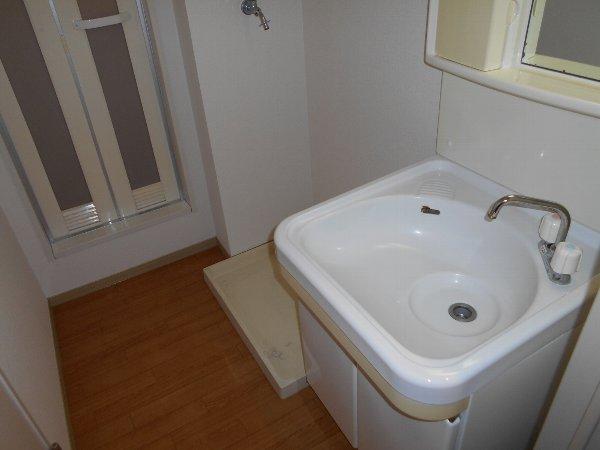 リバーサイドハウス 105号室の洗面所