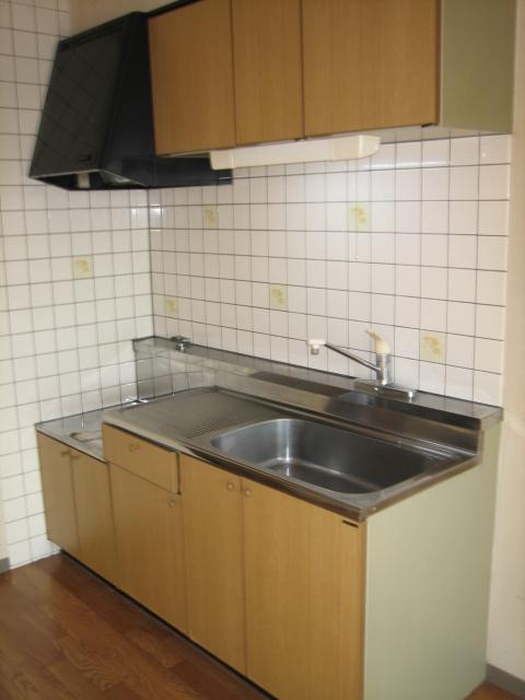 キャッスル小川 101号室のキッチン