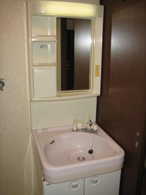 キャッスル小川 101号室の洗面所