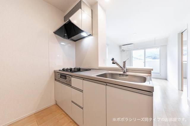アドニスB 02010号室のキッチン