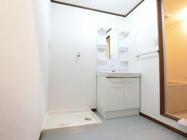 サンライズヴィラ 03030号室の洗面所
