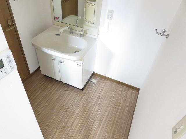 ケイズ河渡B 206号室の洗面所