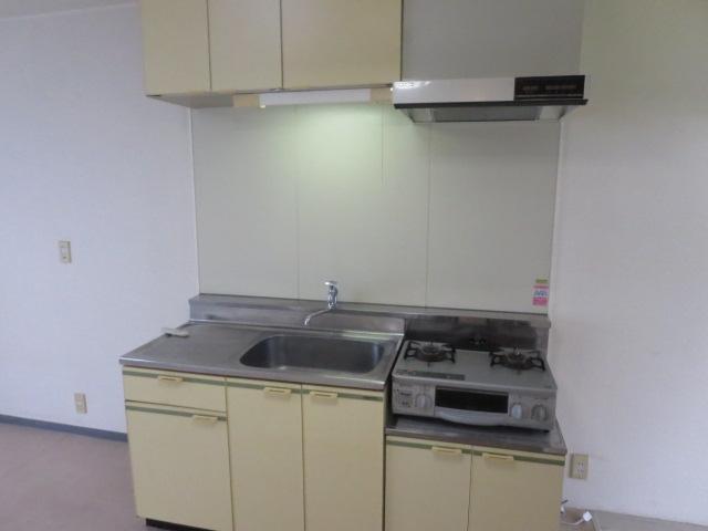 ロイヤル石榑Ⅱ 202号室のキッチン