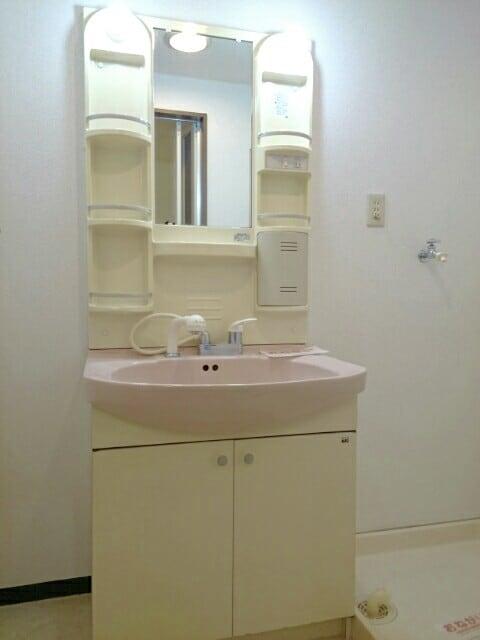 セレクトT 01010号室の洗面所