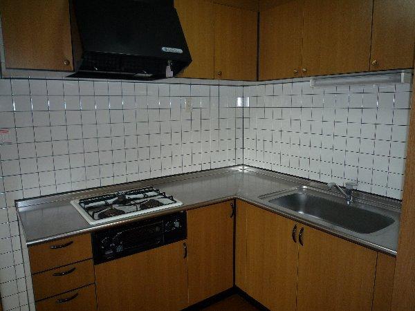 エステート15 203号室のキッチン