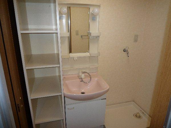エステート15 203号室の洗面所