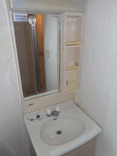 グランシャリオ竜南 103号室の洗面所
