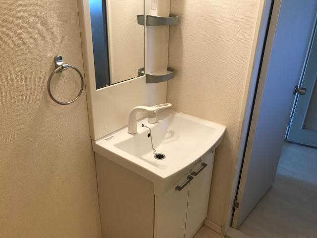 ハイツ園城 00305号室の洗面所