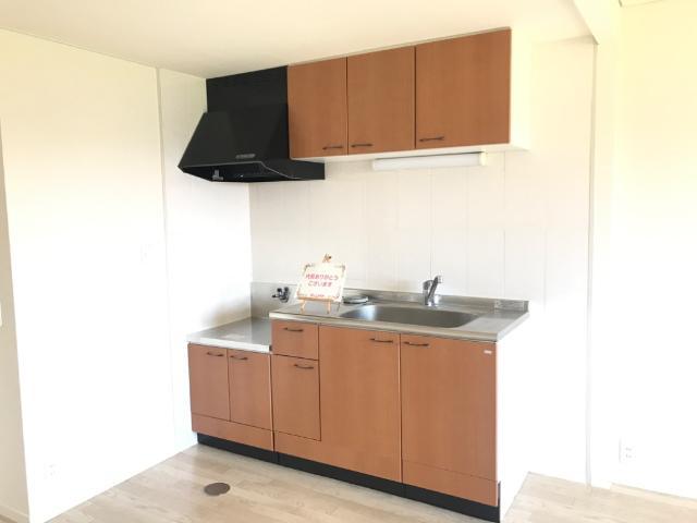 ハイツ園城 00305号室のキッチン
