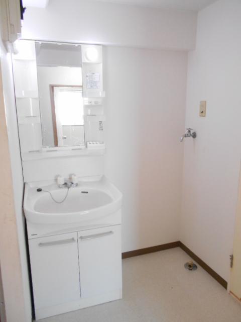 メゾンドール加藤 205号室の洗面所
