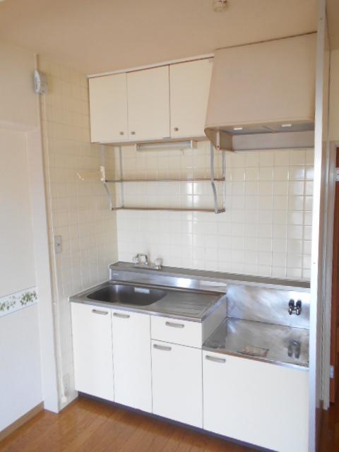 メゾンドール加藤 305号室のキッチン
