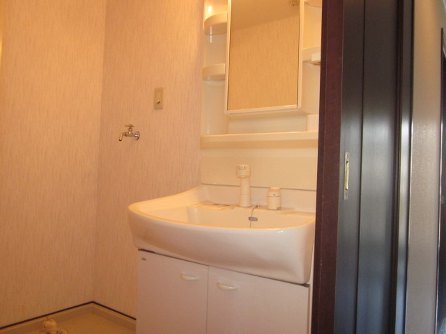 WIZARD 03020号室の洗面所