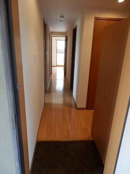 ハイビスカス辰巳 301号室の玄関