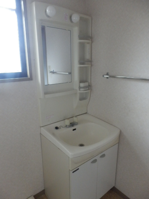 サンメゾン大宮 202号室の洗面所