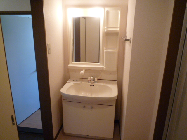 グランデージ堀 03040号室の洗面所