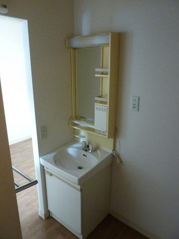 リバーサイド戸田A 102号室の洗面所
