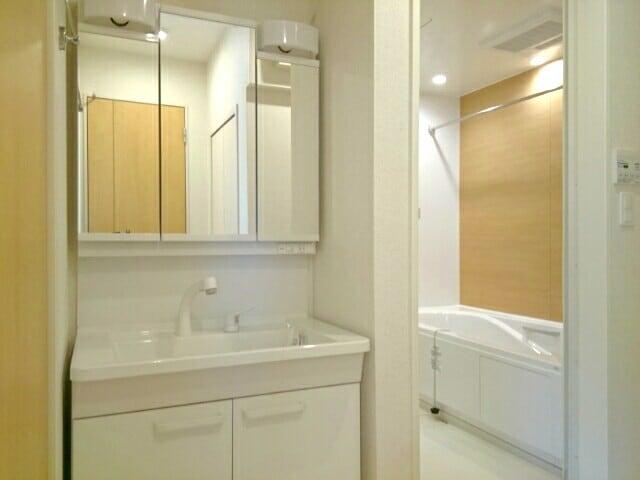 リヴェール・ピアⅠ 01010号室の洗面所