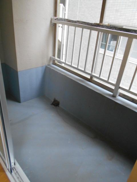 新宿マンション 201号室のバルコニー