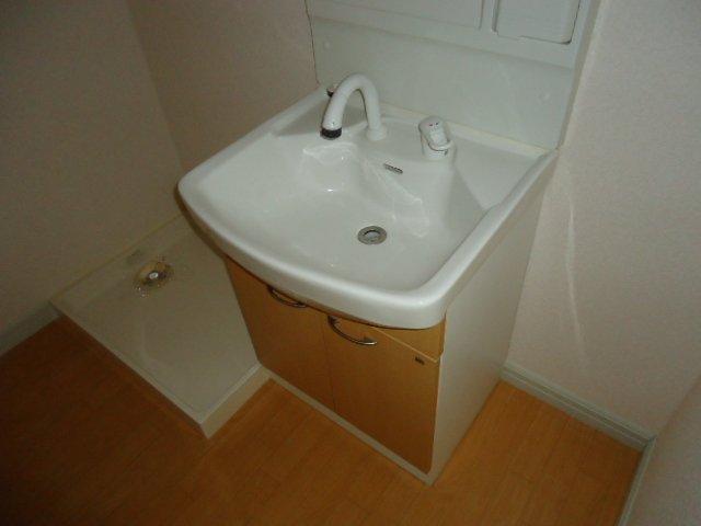 ハイムツースリー 203号室の洗面所