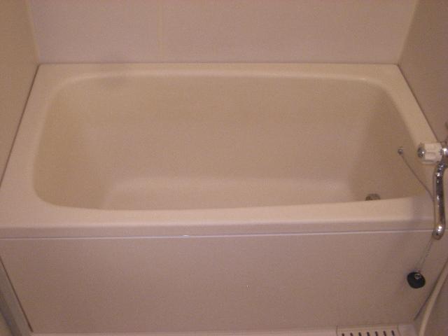 ドルフヤマノウチB 303号室の風呂