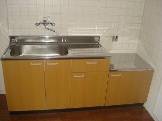 サンハイツ栄 00102号室のキッチン