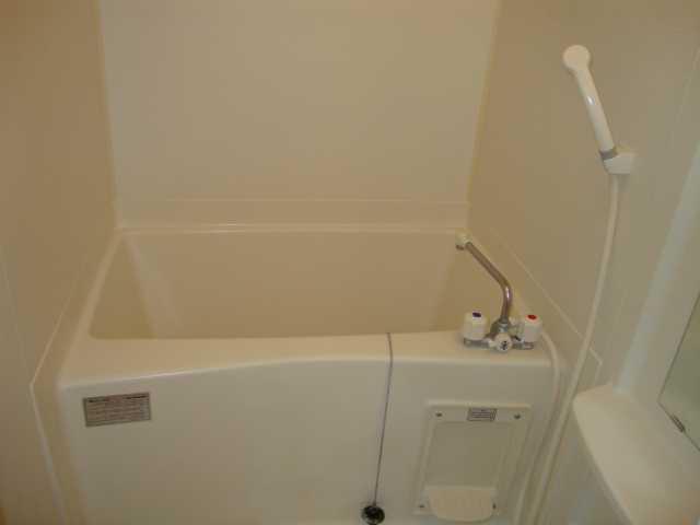 ライフシティ・ネオ 102号室の風呂