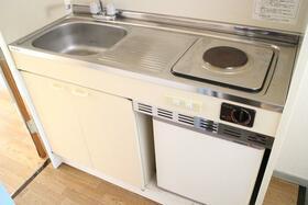 グリーンパーク 103号室のキッチン