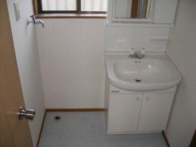 ハイツ飯野 201号室の洗面所