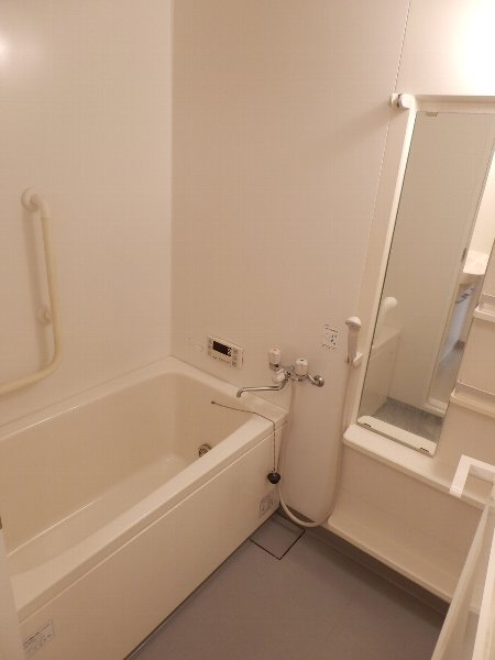 ハイビスカス辰巳 201号室の風呂