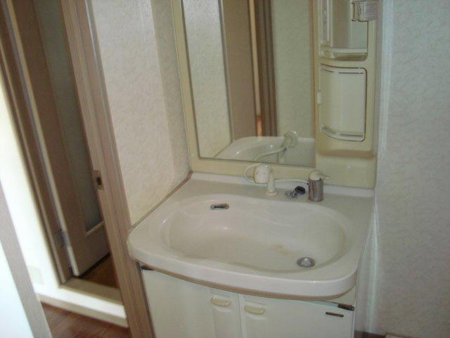 ロイヤルガーデン杉山 105号室の洗面所