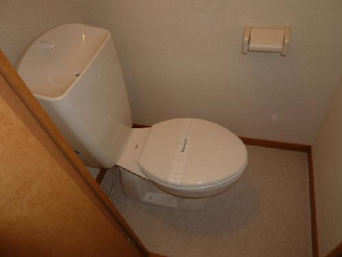 レオパレスエレガンス サトウⅡ 207号室のトイレ