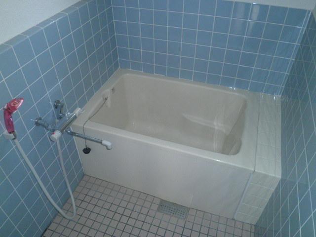 ワイズタウン 2棟 303号室の風呂