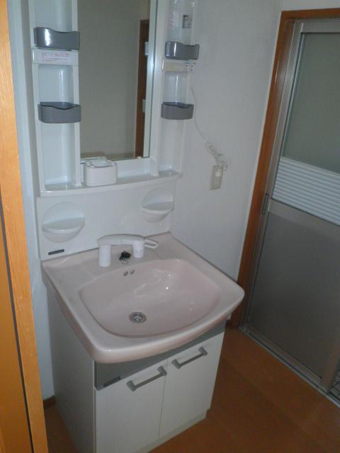 ワイズタウン 2棟 303号室の洗面所
