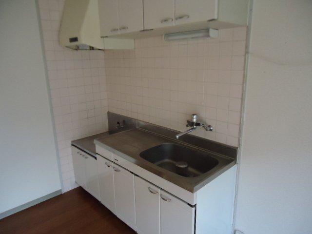 レインボー S・R 00203号室のキッチン