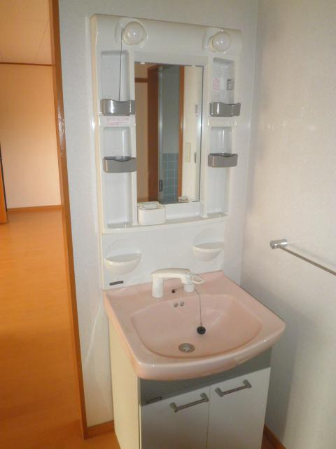 ワイズタウン 1棟 301号室の洗面所