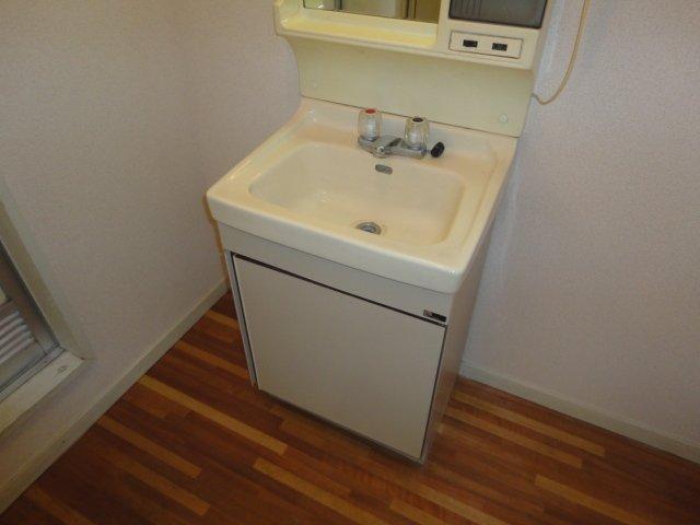 アムールタウン 00105号室の洗面所