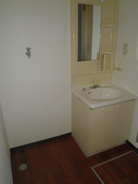 エスポアロイヤル 203号室の洗面所
