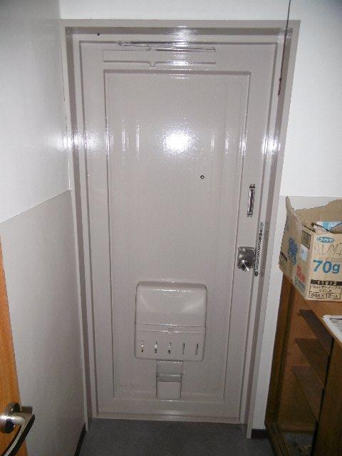 瑞穂ビル 502号室の玄関
