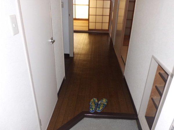 第3菊屋ビル 3E号室の玄関