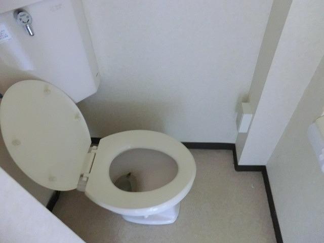 セイフォーレジデンス 306号室のトイレ