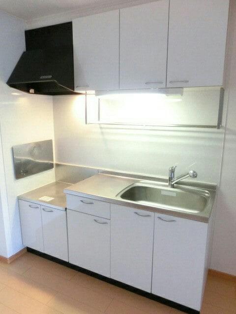 オーデンハオス B棟 01030号室のキッチン