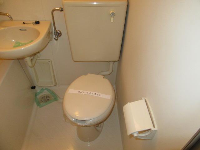 メゾン・ド・フランドル 406号室のトイレ