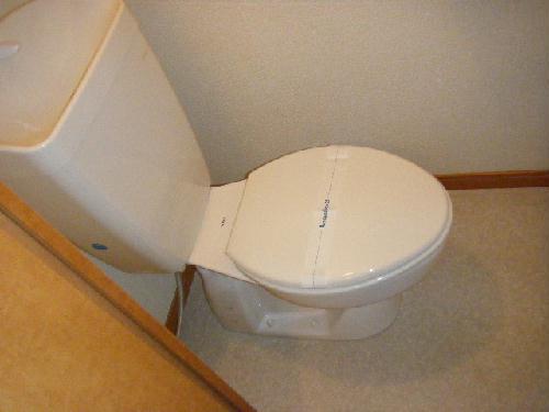 レオパレスシュガーグレイス 117号室のトイレ