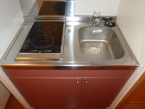 レオパレスエレガンス サトウⅡ 115号室のキッチン