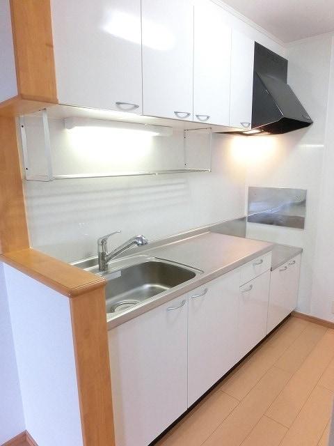レジデンス ブロッコリーE棟 02030号室のキッチン